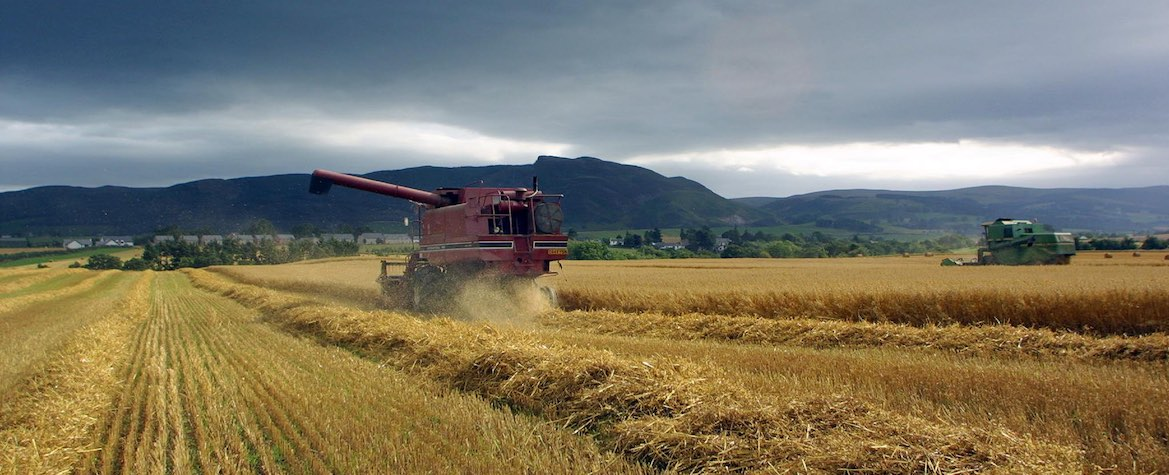Harvest in Perthshire